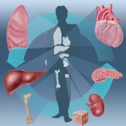 http://hamdala.files.wordpress.com/2010/02/organtransplant-aimhospital.jpg